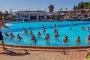camping Argeles sur Mer avec piscine